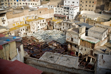 Красильни кожи в Фесе. Марокко, Фес