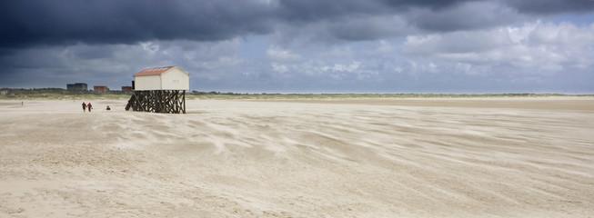 Wall Mural - Sandsturm