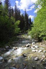 Creek in Tatra mountains