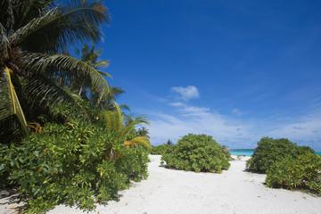 Maldives - Malediven