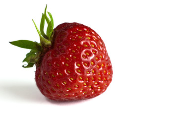 Erdbeere solo