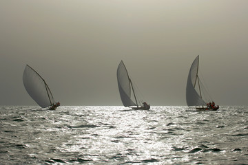 Traditional Dhows