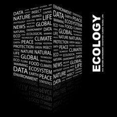 ECOLOGY. Illustration with different association terms.
