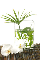 green leaf in vase and orchid on mat