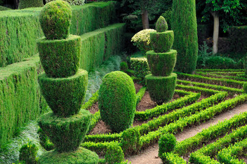 Decorative green park – Botanical garden Funchal, Madeira.