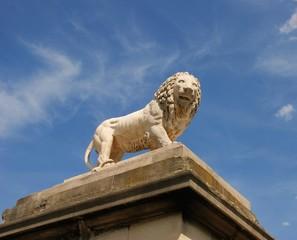 Lion à Paris