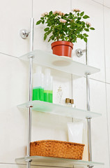 Bathroom shelf with plant in flowerpot and decor
