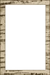 Birch frame vector
