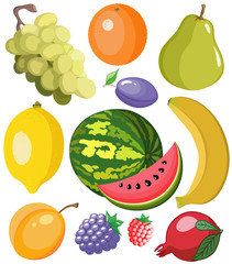 Set of beautiful juicy and color fruits