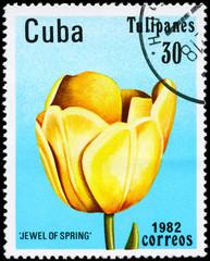 CUBA - CIRCA 1982 Jewel of Spring
