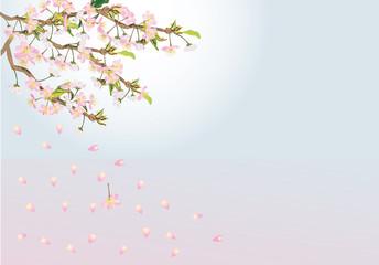 cherry tree flowers fall illustration