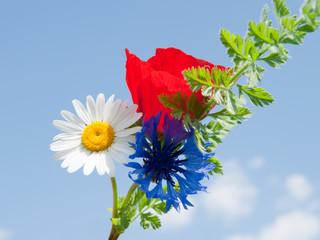 Blumensträussle