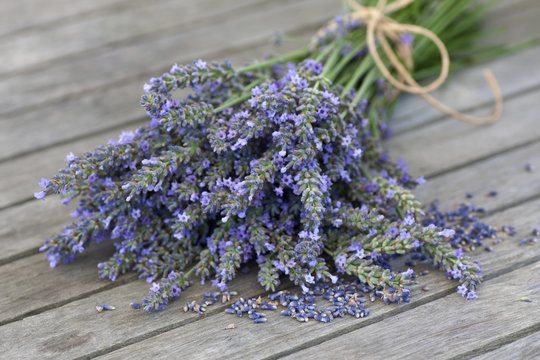 Lavender bouquet with seeds