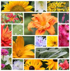 Mosaïque - Fleurs