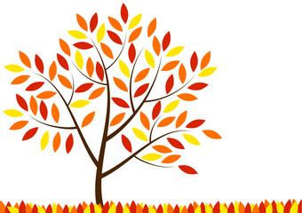 Colored autumn tree
