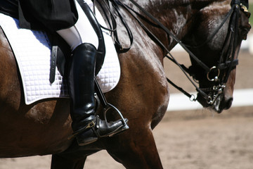 Rider on horseback.