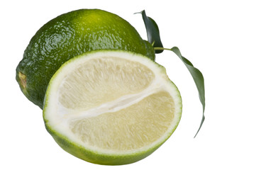 Cutting lime on white macro