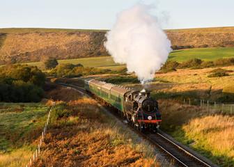 Steam Engine in autumn sunlight