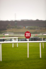 Sign At The Racecourse