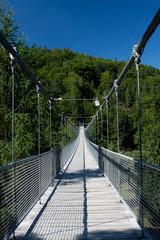 Hängebrücke im Wald mit Stahlseil