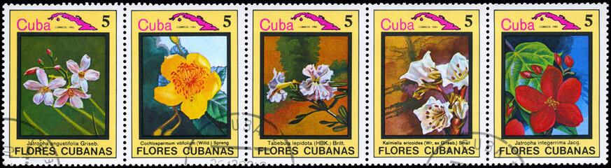 CUBA - CIRCA 1983 Cuban flowers