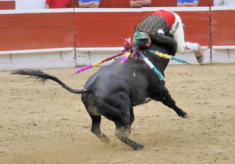 Forcado on Bull