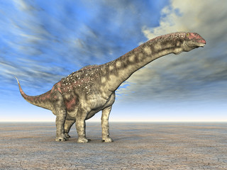 Diamantinasaurus