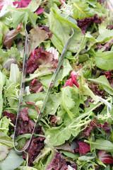 Mesclun salad mix with tongs