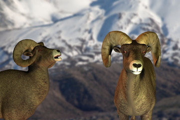 rendering of big horned sheep