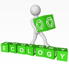Cubes - ECOLOGY