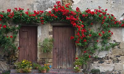 Donzenac (Corrèze) - Pas de porte fleuri