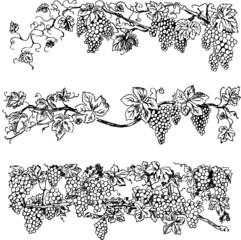 Creative grape bars