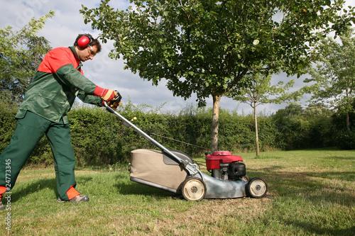 Tonte d 39 un pr par un p pini riste paysagiste photo for Tonte pelouse tarif