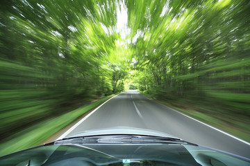 Wall Mural - car driving fast into forest