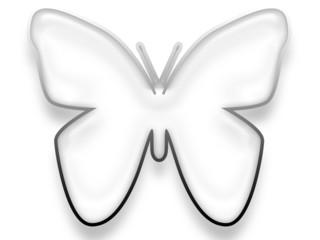 Schmetterling White