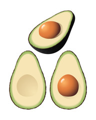 An isolated vector avocado and two halves