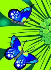 Illustration of flower with butterfly in a green background