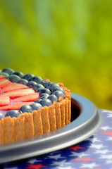 Blueberry and strawberry cake at summer with green background