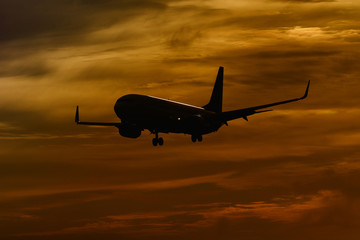 plane flying and sunset