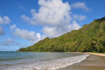 tropischer Strand Hawaii