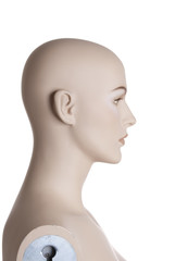 Head of the female mannequing | Studio isolated