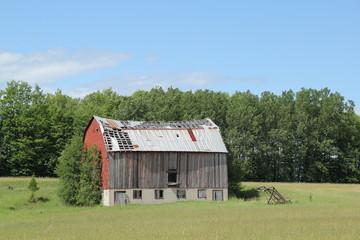 Old barn in summer