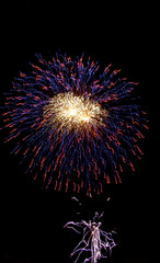 colorful fireworks on the dark sky