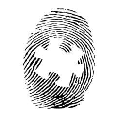 Fingerprint with a puzzle vector
