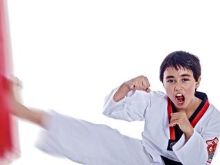 martial arts scream