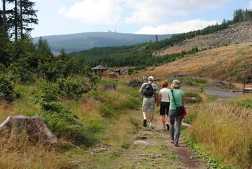 Wanderer am Brocken