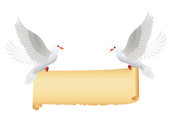 Doves with banner isolated