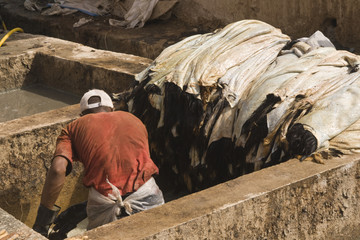Traditional tannery in Marrakesh in Morocco