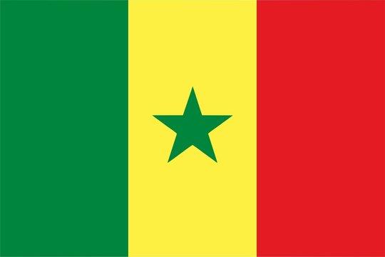 Senegal flag isolated vector illustration
