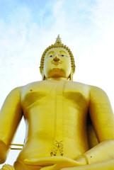 image of Buddha is big